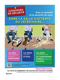 affiche_securite_mini_bordure.jpg