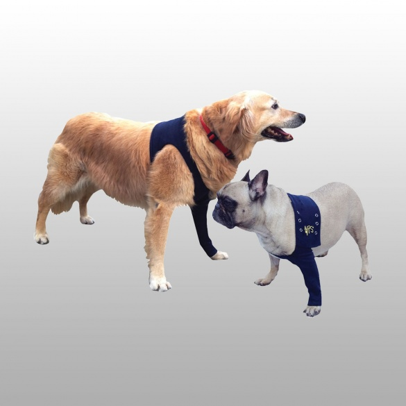 mat riel v t rinaire attelle medical pet shirt chien. Black Bedroom Furniture Sets. Home Design Ideas
